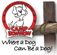 image of logo of Camp Bow Wow franchise business opportunity Camp Bow Wow dog play franchises Camp Bow Wow doggie day camp franchising