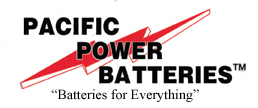 Pacific Power Batteries Franchise Business Franchising